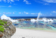 Photo of A35JP  – Tongatapu Island, OC-049