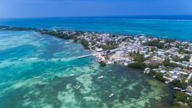 Photo of V31CO – Caye Caulker Island, NA-105