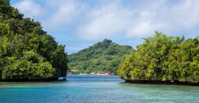 Photo of T88UW – Koror Island Palau, OC-009