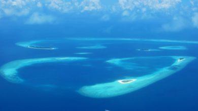 Photo of 8Q7KX – Baa Atoll, AS-013
