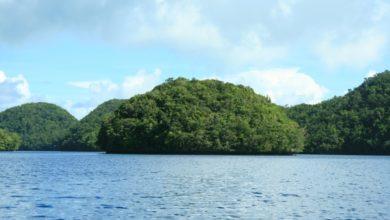 Photo of T88KZ – Koror Island Palau, OC-009