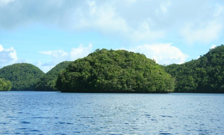 Photo of T88KZ – Koror Island Palau, OC-009