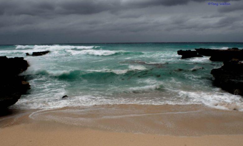 Photo of ZF2PG – Grand Cayman Island, NA-016
