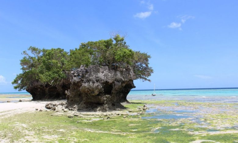 Photo of 5H4WZ – Pemba Island, AF-063