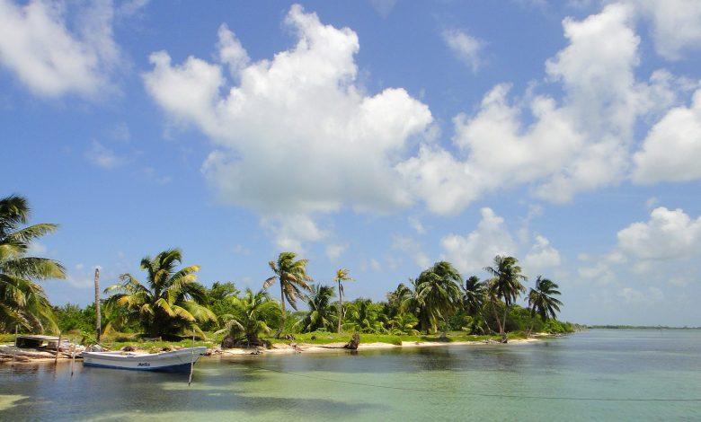 Photo of V31TA – Turneffe Atoll, NA-123
